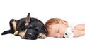 Sleeping baby boy and puppy with toy dog Royalty Free Stock Photos