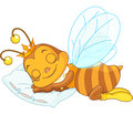 Sleeping bee an adorable on a pillow Stock Photography