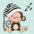 Sleeping cute Monkey in a hood Royalty Free Stock Photo