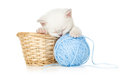 Sleeping kitten in basket Stock Photos