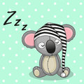 Sleeping koala in a cap Royalty Free Stock Images