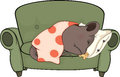 Sleeping mouse cartoon little grey little on a green sofa Stock Image