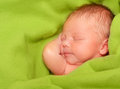 Sleeping Newborn Baby Boy Royalty Free Stock Photo