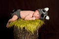 Sleeping Newborn Baby Boy Wearing a Raccoon Costume Royalty Free Stock Photo