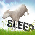 Sleeping sheep or lamb illustration Royalty Free Stock Photos