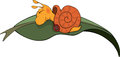 Sleeping snail cartoon lovely on green sheet Stock Photo