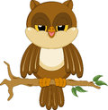 Sleepy night owl Stock Photo