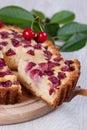 Slice of сherry pie close up Stock Images