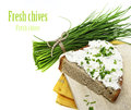 A slice of bread with cheese and chives white background Royalty Free Stock Photography