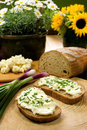 Slice of bread spread with sheep cheese Royalty Free Stock Photography