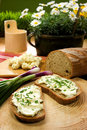 Slice of bread spread with sheep cheese Royalty Free Stock Photo