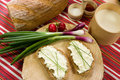 Slice of bread spread with sheep cheese Royalty Free Stock Images