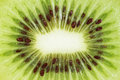 Slice of fresh kiwi fruit. Royalty Free Stock Photo