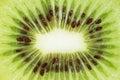 Slice of fresh kiwi fruit. Royalty Free Stock Photo