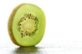 Slice of fresh kiwi fruit Royalty Free Stock Photo