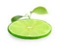 Slice of fresh lime one and focus green leaf on backdrop placed on white background close up studio photography Royalty Free Stock Photo