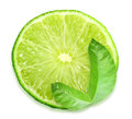 Slice of fresh lime one and green leaf placed on white background close up studio photography Stock Images