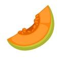 Slice of fresh melon