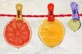 A slice of grapefruit orange and lime hanging on a clothes line with colourful clothes pins juicy droplets a bottom of each fruit Stock Image