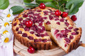Slice of сherry pie close up Stock Images