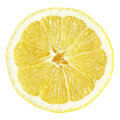 Slice of lemon fruit isolated on white with clipping path Royalty Free Stock Photography