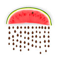 Slice of nice fresh watermelon vector eps illustration Stock Image