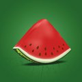 Slice of nice fresh watermelon vector illustration Stock Photography