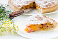 Slice of pie with apples and dried apricots Royalty Free Stock Photo