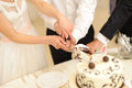 Slice of wedding cake bride and groom cutting together Royalty Free Stock Image