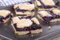 Sliced blueberry bars on a baking sheet Royalty Free Stock Photos