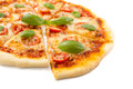 Sliced Cheese Margerita Pizza Royalty Free Stock Photo