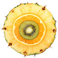 Sliced fruits isolated kiwi pineapple orange macro and top view Royalty Free Stock Photos