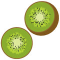 Sliced kiwi in half front and view isolated on a white background Stock Photo