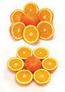 Sliced orange collection Stock Photography