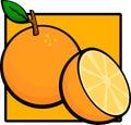 Sliced orange fruit Royalty Free Stock Photo