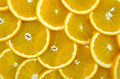 Sliced ripe oranges Royalty Free Stock Photo