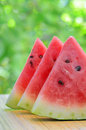 Sliced watermelon on a plate in nature Royalty Free Stock Photo