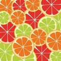 Slices of citrus fruit Royalty Free Stock Images