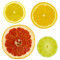 Slices citrus fruits white background isolated Royalty Free Stock Photos