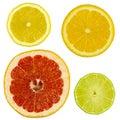 Slices citrus fruits white background isolated Royalty Free Stock Photos