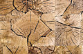 Slices of end grain wood floor covering made from Royalty Free Stock Photography