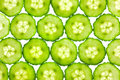 Slices of fresh Cucumber / background / back lit Royalty Free Stock Photography