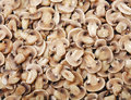 Slices of mushrooms. Royalty Free Stock Photos
