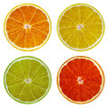Slices of orange, pink grapefruit, lime and lemon isolated on white background. Royalty Free Stock Photo