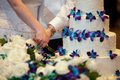 Slicing the wedding cake young couple cutting their line by white roses and blue orchids Stock Photo