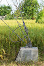 Slings lock safty with pole steel on stake in rice field Royalty Free Stock Images