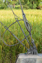 Slings lock safty with pole steel on stake in rice field Stock Photography