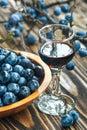 Sloe gin Royalty Free Stock Photo