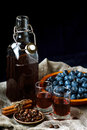 Sloe gin. Glass of blackthorn homemade light sweet reddish-brown liquid. Sloe-flavored liqueur or wine Royalty Free Stock Photo