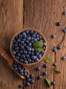 Sloes in bowl Royalty Free Stock Photo